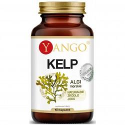 KELP - 100 kapsułek Yango