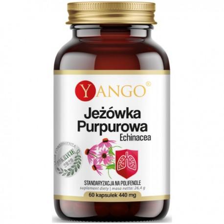 Jeżówka Purpurowa - Echinacea - 60 kap Yango