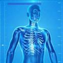 Stawy, kości, mięśnie